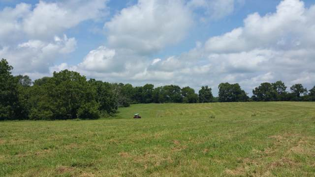 1 Old Columbia Rd, Unionville, TN 37180 (MLS #RTC2087728) :: HALO Realty