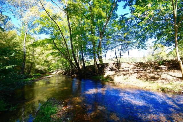 0 Cane Creek Road, Hohenwald, TN 38462 (MLS #RTC2089034) :: Keller Williams Realty
