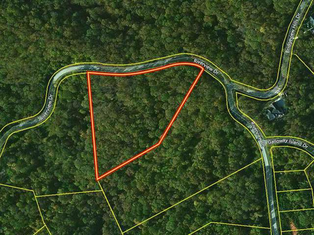 0 River View Drive, Dandridge, TN 37725 (MLS #RTC2089432) :: Village Real Estate