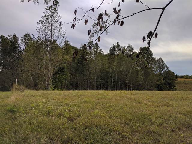 0 Andy Anderson Rd, Lynchburg, TN 37352 (MLS #RTC2090480) :: Stormberg Real Estate Group