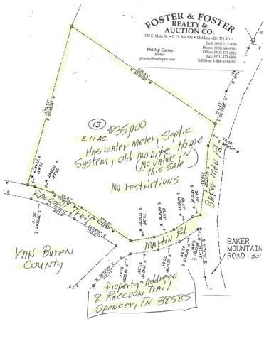 8 Raccoon Trail, Spencer, TN 38585 (MLS #RTC2090655) :: Oak Street Group