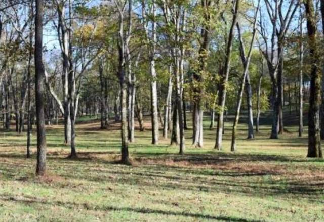 1597 Bob Davis Road, Lewisburg, TN 37091 (MLS #RTC2090729) :: Maples Realty and Auction Co.