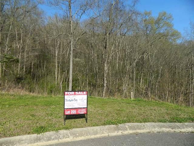 205 Sandgate Dr., Smithville, TN 37166 (MLS #RTC2091016) :: Oak Street Group