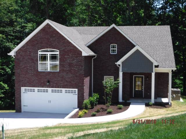 3047 Gracie Ann Dr, Greenbrier, TN 37073 (MLS #RTC2091103) :: John Jones Real Estate LLC