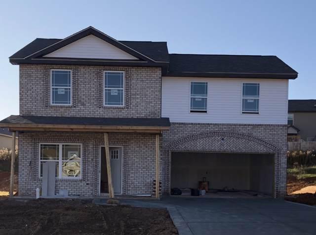 1033 Berra Drive, Springfield, TN 37172 (MLS #RTC2092060) :: Village Real Estate