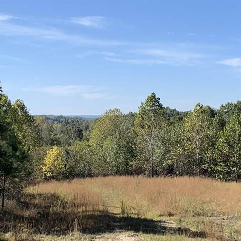 0 Deer Haven Road, Indian Mound, TN 37079 (MLS #RTC2092877) :: FYKES Realty Group