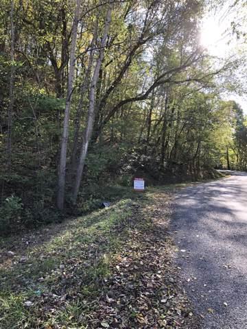 0 Haywood Hollow, Columbia, TN 38401 (MLS #RTC2093322) :: FYKES Realty Group