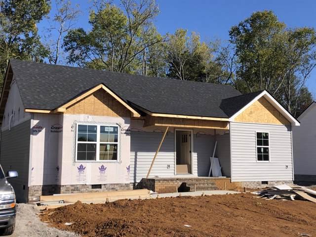 312 Spring Creek St, Chapel Hill, TN 37034 (MLS #RTC2093351) :: CityLiving Group