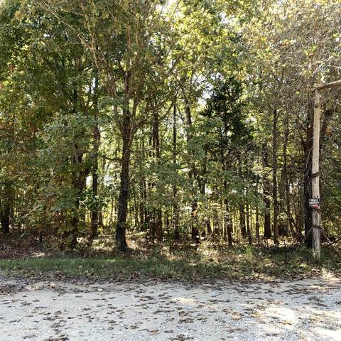 0 7 Mile Ridge Road, Indian Mound, TN 37079 (MLS #RTC2093670) :: The Milam Group at Fridrich & Clark Realty