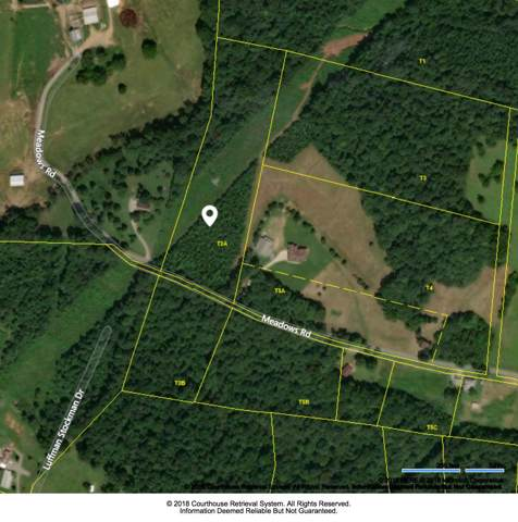 0 Meadows Rd, Cumberland Furnace, TN 37051 (MLS #RTC2095125) :: Christian Black Team