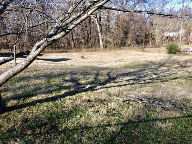 46 Bunker Hill Rd, Clarksville, TN 37042 (MLS #RTC2095854) :: Village Real Estate