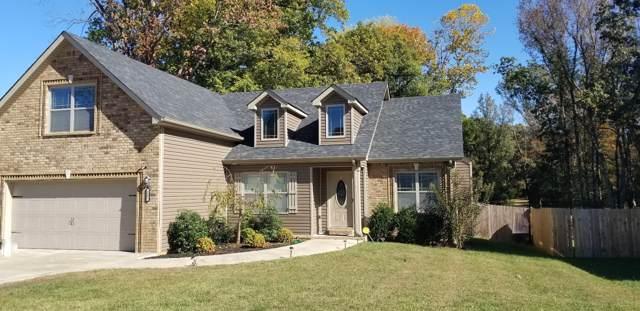 157 Sycamore Hill Drive, Clarksville, TN 37042 (MLS #RTC2095950) :: Village Real Estate