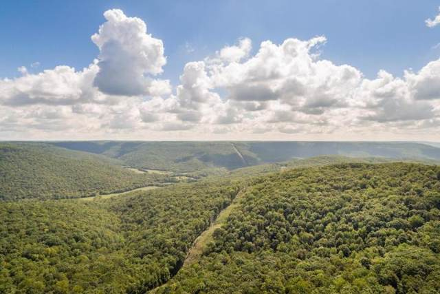 3177 Sherwood Rd, Sewanee, TN 37375 (MLS #RTC2096238) :: Village Real Estate