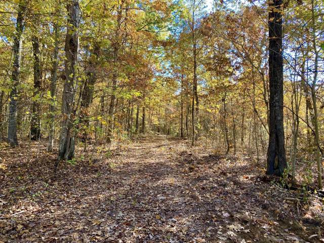 1 Lonnie Smith Rd, Woodbury, TN 37190 (MLS #RTC2098810) :: Maples Realty and Auction Co.
