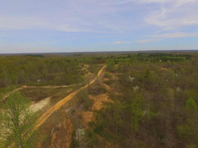 0 Gander Branch Rd, Waverly, TN 37185 (MLS #RTC2099028) :: Village Real Estate