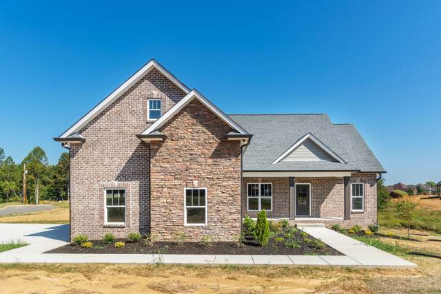 1013 Wales Ct, Greenbrier, TN 37073 (MLS #RTC2099109) :: RE/MAX Choice Properties