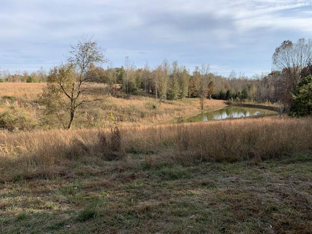 263 State Line Rd, Saint Joseph, TN 38481 (MLS #RTC2099424) :: CityLiving Group