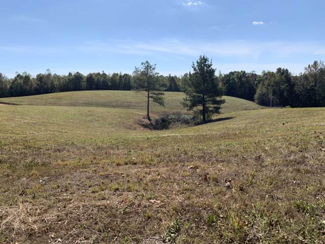 7807 Whitten School Rd, Iron City, TN 38463 (MLS #RTC2099441) :: CityLiving Group