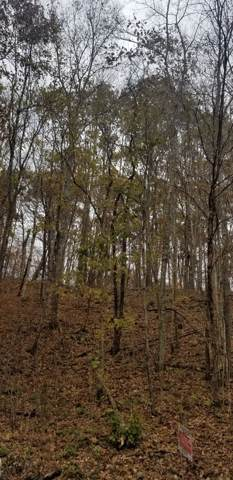 0 Rogues Fork Rd, Bethpage, TN 37022 (MLS #RTC2099941) :: Keller Williams Realty