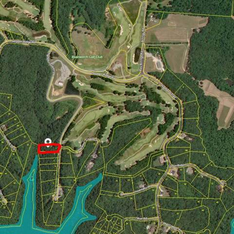 1 Harbor Green Pl- Lot 1, Sparta, TN 38583 (MLS #RTC2100116) :: Cory Real Estate Services