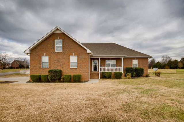 1056 Emerald Way, Castalian Springs, TN 37031 (MLS #RTC2100608) :: Nashville on the Move
