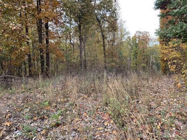 0 Burt-Burgen Rd, Bradyville, TN 37026 (MLS #RTC2101010) :: Village Real Estate
