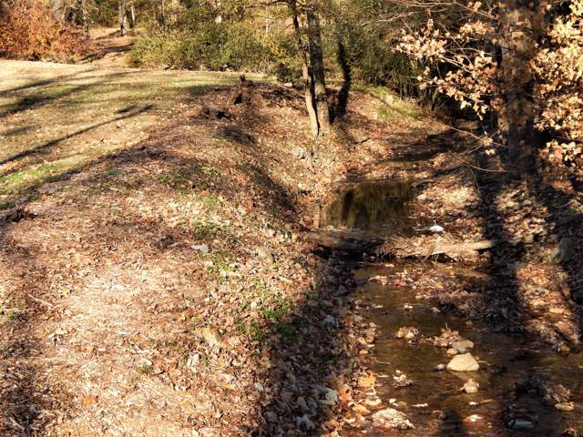 507 Hurricane Meadows Dr, Waynesboro, TN 38485 (MLS #RTC2101067) :: Village Real Estate
