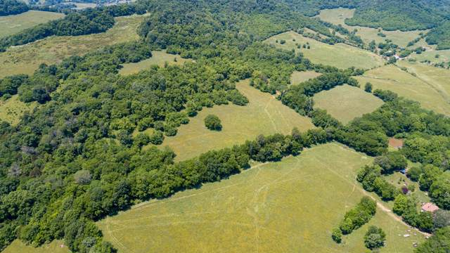 0 Bledsoe Rd, Petersburg, TN 37144 (MLS #RTC2101069) :: Ashley Claire Real Estate - Benchmark Realty
