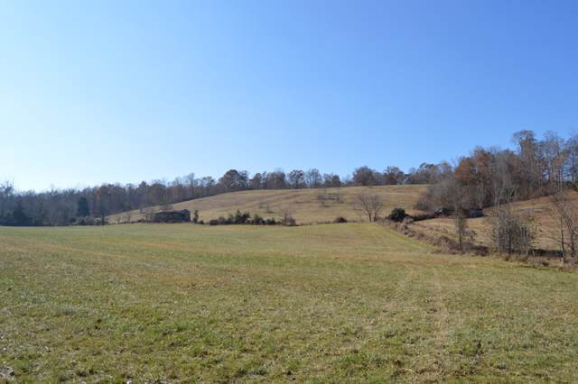 1132 Elk Creek Rd, Cumberland City, TN 37050 (MLS #RTC2101070) :: The Milam Group at Fridrich & Clark Realty