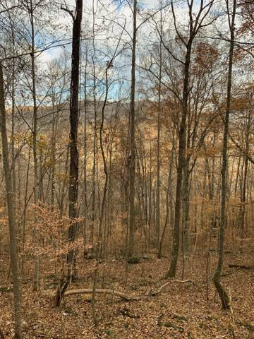 0 East Bobcat Lane, Wilder, TN 38589 (MLS #RTC2101326) :: Five Doors Network