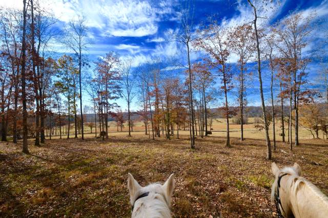 0 Barnesville-Henryville Rd, Summertown, TN 38483 (MLS #RTC2101978) :: Village Real Estate