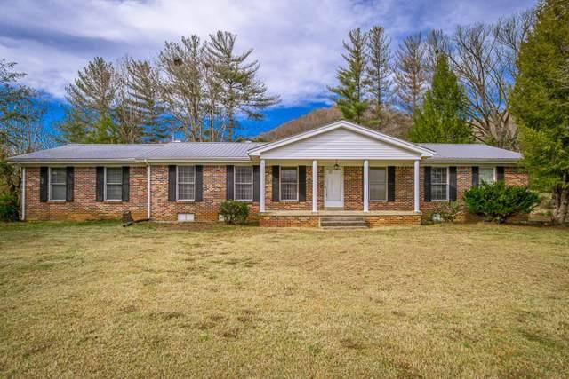 141 Big Bottom Rd, Gainesboro, TN 38562 (MLS #RTC2102203) :: Village Real Estate