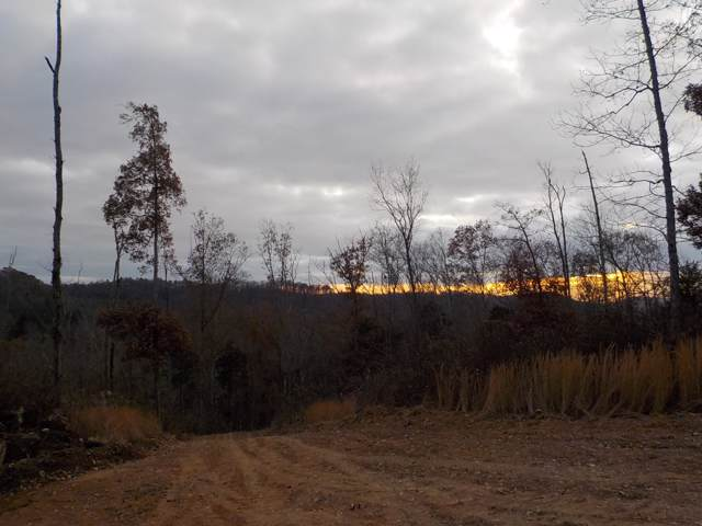 0 Old Wolf Hill Rd, Bethpage, TN 37022 (MLS #RTC2102664) :: Ashley Claire Real Estate - Benchmark Realty