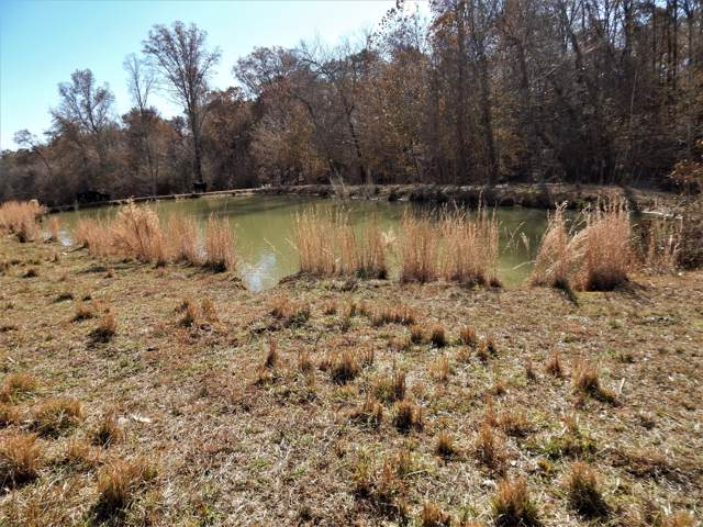 1198 David Patterson Rd, Lutts, TN 38471 (MLS #RTC2102981) :: Village Real Estate