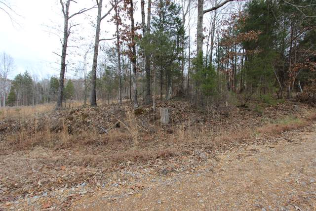 1 Rolling Hills Dr, Cumberland City, TN 37050 (MLS #RTC2103088) :: Village Real Estate