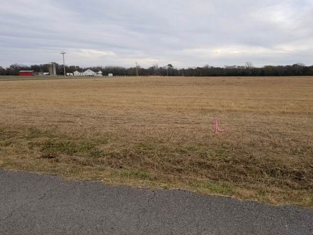1 Karo Rd, Christiana, TN 37037 (MLS #RTC2103193) :: Team Wilson Real Estate Partners