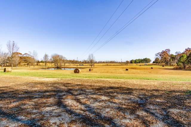 4188 Summertown Hwy, Summertown, TN 38483 (MLS #RTC2103702) :: Village Real Estate