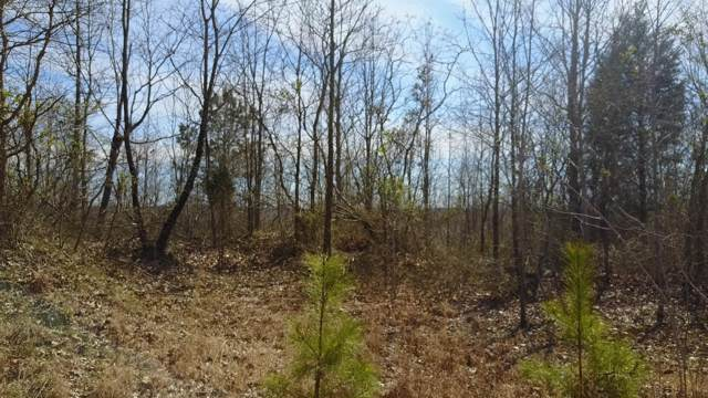 0 Clydeton Rd, Waverly, TN 37185 (MLS #RTC2104014) :: HALO Realty