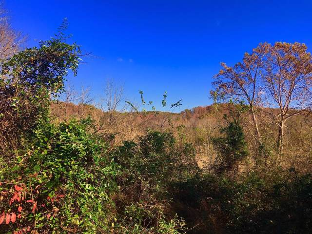 0 Big East Fork, Franklin, TN 37064 (MLS #RTC2104146) :: Village Real Estate
