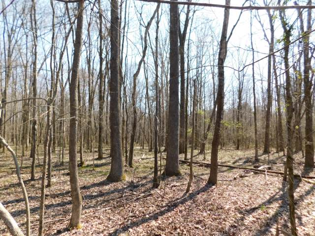 0 Hubert Manul, Michie, TN 38357 (MLS #RTC2104651) :: Village Real Estate