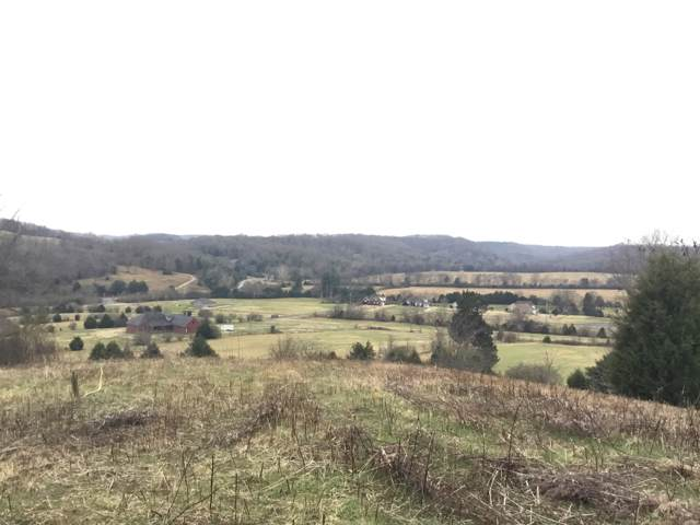 156 Dickson Marks Rd, Pulaski, TN 38478 (MLS #RTC2105370) :: CityLiving Group