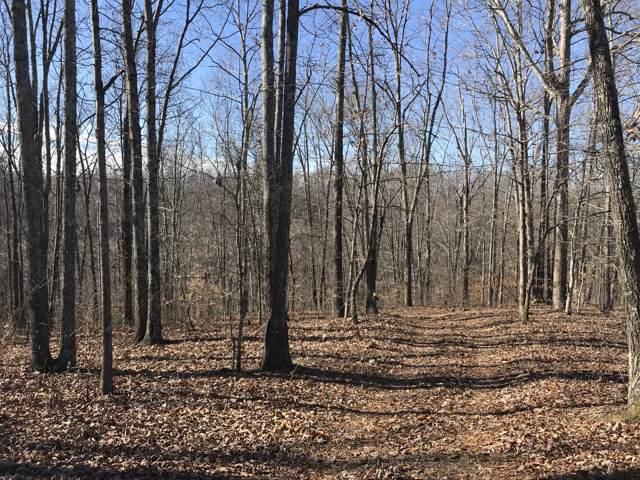 382 Chestnut Grove Rd, Pulaski, TN 38478 (MLS #RTC2105550) :: Village Real Estate