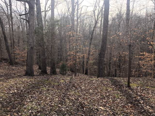 1055 Pack Rd, White Bluff, TN 37187 (MLS #RTC2106823) :: Fridrich & Clark Realty, LLC