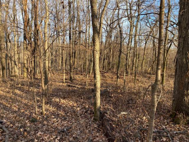 0 Haywood Hollow, Columbia, TN 38401 (MLS #RTC2106858) :: John Jones Real Estate LLC