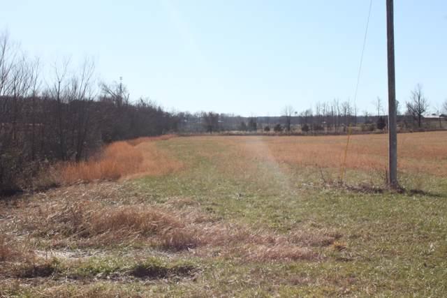 0 Capps Farm Lane, Mc Ewen, TN 37101 (MLS #RTC2106982) :: The Easling Team at Keller Williams Realty