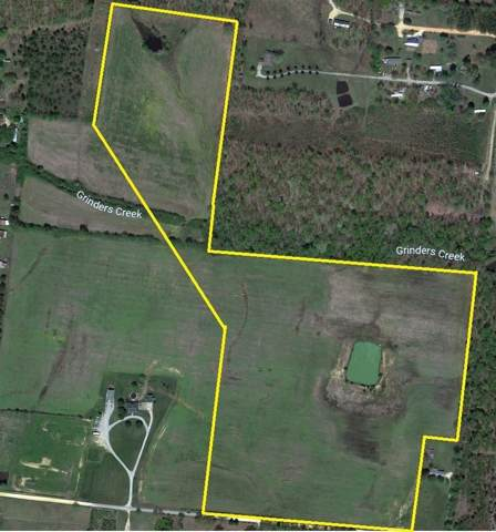 1 Colonial Rd, Hohenwald, TN 38462 (MLS #RTC2108548) :: Felts Partners