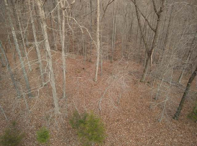 1 Coves Pointe Rd, Sparta, TN 38583 (MLS #RTC2109718) :: Village Real Estate