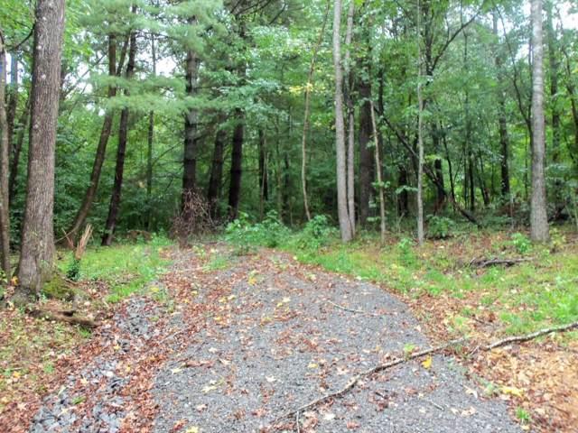 541 Forest Trl, Bumpus Mills, TN 37028 (MLS #RTC2110563) :: Village Real Estate