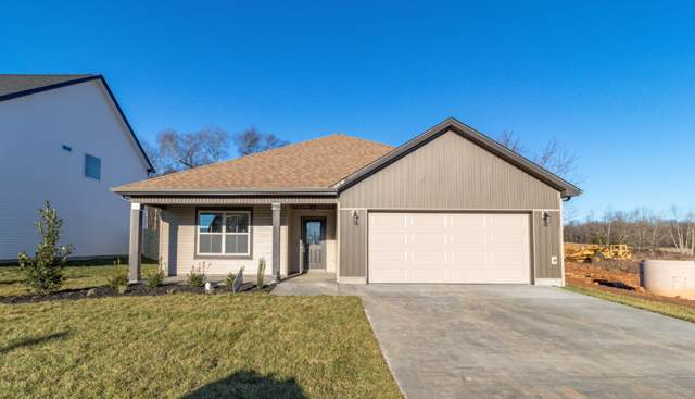 293 Eagles Bluff, Clarksville, TN 37040 (MLS #RTC2110956) :: REMAX Elite