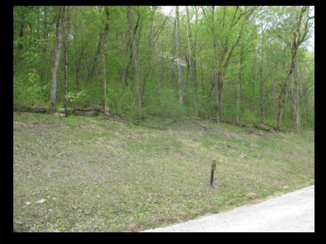 86 Lake View Drive, Smithville, TN 37166 (MLS #RTC2112853) :: Village Real Estate
